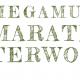Mega Muziek Marathon Terwolde